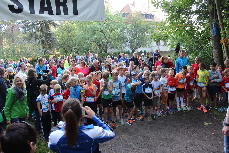 Start 2,5km
